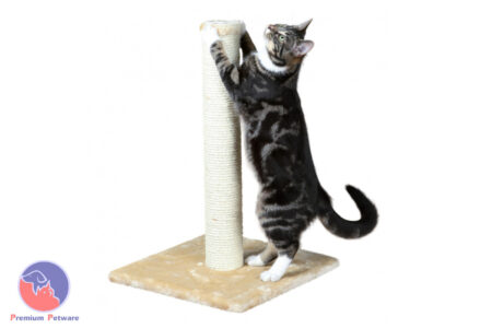 TRIXIE PARLA SCRATCHING POST (62cm) - BEIGE