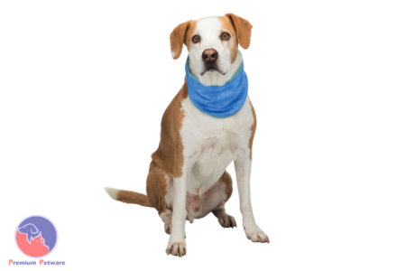 TRIXIE COOLING BANDANA FOR DOGS