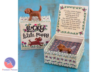 NATURAL LIFE LITTLE PUPPY TOKEN IN A BOX